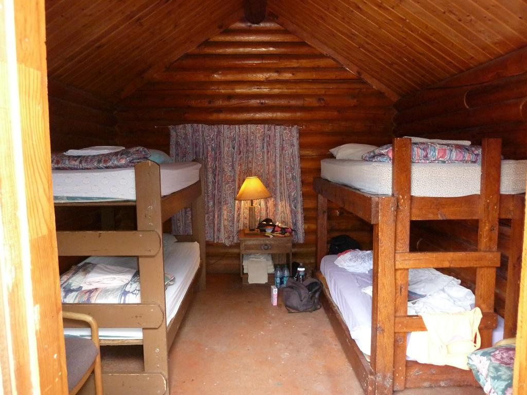 Inside a cabin at the Lazy Lizard Hostel